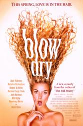 Blow Dry movie poster (2001) original 27x40 VG