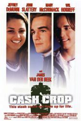 Cash Crop movie poster [James Van Der Beek, Mary McCormack] 27x40