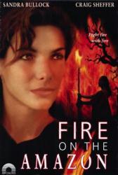 Fire On the Amazon movie poster [Sandra Bullock] 27x40