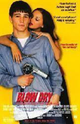 Blow Dry movie poster [Josh Hartnett & Rachael Leigh Cook] video/VG
