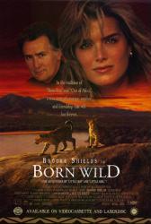 Born Wild movie poster [Brooke Shields & Martin Sheen] video poster