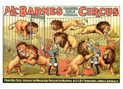 Al G. Barnes Trained Wild Animal Circus poster (24 X 18) Lions