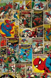 The Amazing Spider-Man poster: Comic Covers and Panels (24'' X 36'')