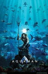 Aquaman movie poster [Jason Momoa] 22x34