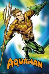 Aquaman poster (24x36) DC Comics superhero