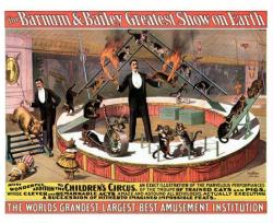 Barnum & Bailey circus poster (24x18) Trained Cats and Pigs