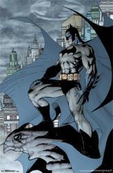 Batman poster: Cape (22x34) DC Comics superhero