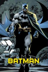 Batman poster: The Dark Knight comic (24x36) DC Comics