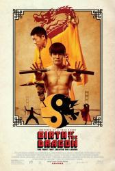 Birth of the Dragon movie poster [Philip Wan-Lung Ng, Xia Yu] 27x40