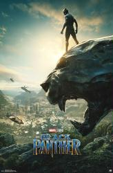 Black Panther movie poster (2018 Marvel Film) 22x34 advance