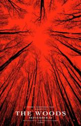 Blair Witch movie poster (The Woods advance version) 27x40 original