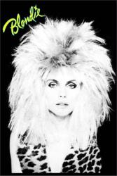 Blondie poster: Debbie Harry with Big Hair (24 X 36) New