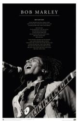Bob Marley poster: Iron Lion Zion (24'' X 36'') New