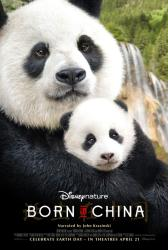 Born in China movie poster (27x40 original) DisneyNature documentary