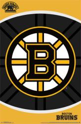 Boston Bruins poster: Logo (NHL) 22x34