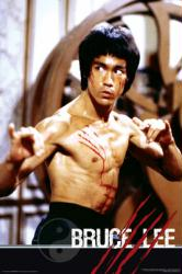 Bruce Lee poster: Fight (24x36 poster) New