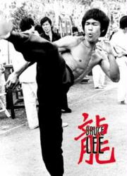 Bruce Lee poster: Kick (24x36) New