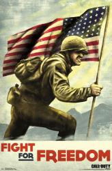 Call of Duty: WWII video game poster (22x34) Fight For Freedom