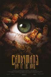 Candyman 3: Day of the Dead movie poster (1999) 27x40