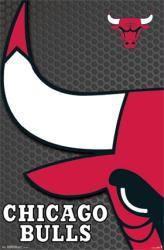 Chicago Bulls poster: Logo (NBA) 22x34