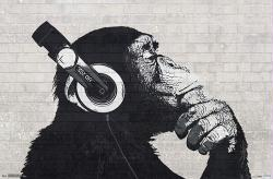 Chimp with Headphones on Wall poster (34x22)