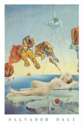 Salvador Dali poster: Dream Caused by the Flight of a Bee (24 X 36)