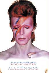 David Bowie poster: Aladdin Sane (24'' X 36'') New