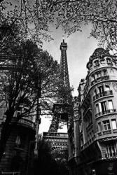 Eiffel Tower poster: Paris, France (24x36) B&W
