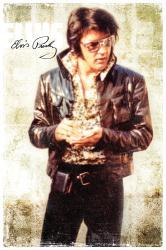 Elvis Presley poster: Cool (24x36)