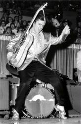 Elvis Presley poster: Hips (22 X 34) New