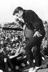 Elvis Presley poster: Tupelo 1956 (24 X 36) New