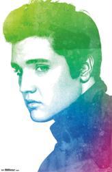 Elvis Presley poster: Watercolor (22x34) New