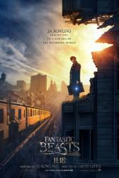 Fantastic Beasts and Where to Find Them movie poster (27x40 advance)
