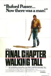 Final Chapter: Walking Tall movie poster [Bo Svenson] 27x41 original