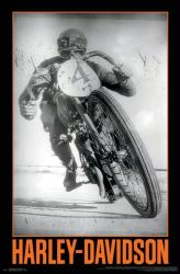Harley-Davidson Motorcycles poster: Classic Racer (22x34)