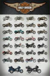 Harley-Davidson Motorcycles poster: Evolution (24'' X 36'') New
