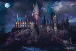 Harry Potter poster: Hogwarts (36x24)