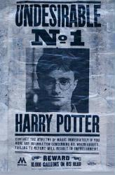 Harry Potter poster: Undesirable No. 1 [Daniel Radcliffe] 22x34