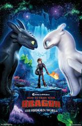 How to Train Your Dragon: The Hidden World movie poster (22x34)