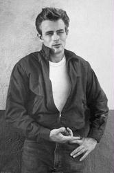 James Dean poster: Jacket (24x36)