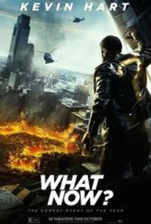 Kevin Hart: What Now? movie poster (original 27x40 advance)