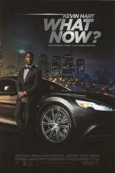 Kevin Hart: What Now? movie poster (27x40 original one-sheet)