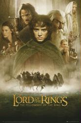The Lord of the Rings: Fellowship of the Ring movie poster (24x36)