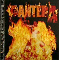 Pantera poster: Reinventing the Steel vintage LP/Album flat (2000)