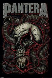 Pantera poster: Snake Eye (24x36)