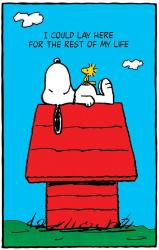 Peanuts poster: Snoopy & Woodstock (24x36) Doghouse