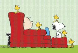 Peanuts poster: Charlie Brown, Snoopy & Woodstocks (40x27) New