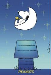 Peanuts poster: Glow In the Dark Moon (27x39) Snoopy & Woodstock