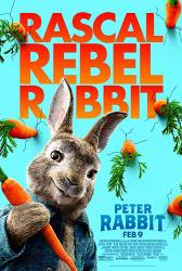 Peter Rabbit movie poster (2018 animated film) 27x40 original