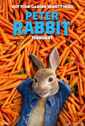 Peter Rabbit movie poster (2018 animated film) 27x40 advance